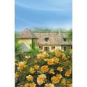 STAMINALI di rosa 100 cm CALIZIA Noa97400A