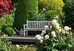 Liebe Freunde der Rosen, liebe Kunden